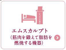 エムスカルプト(筋肉を鍛えて脂肪を燃焼する機器)